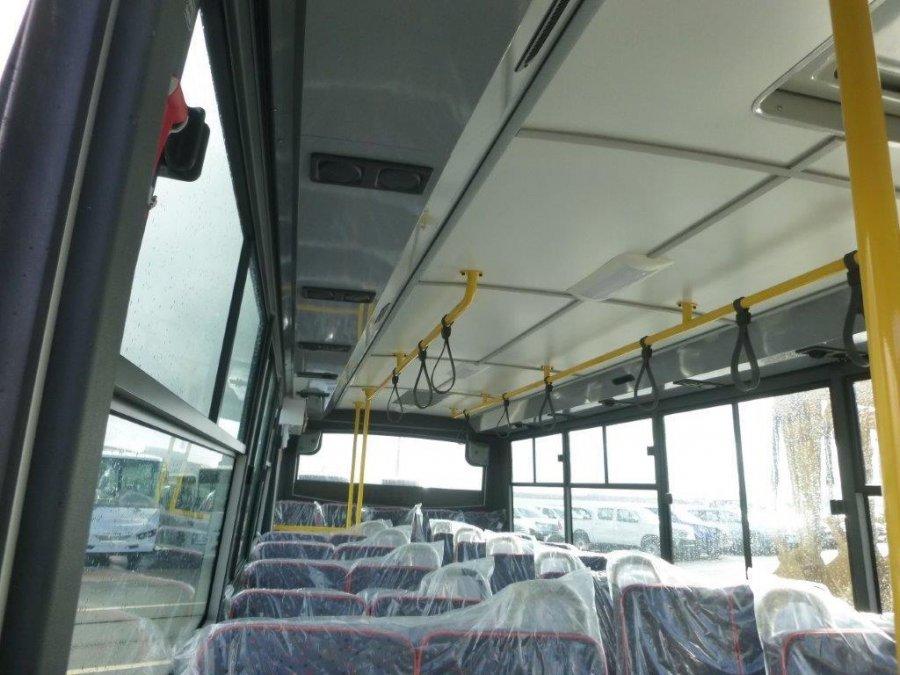 isuzu ecobus urban